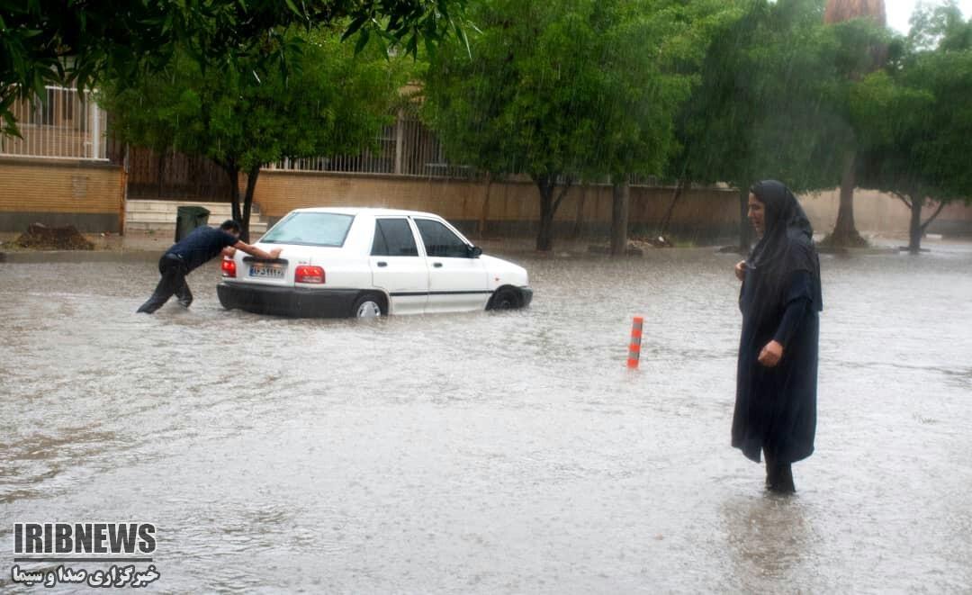 بارش باران در جنوب و مرکز استان بوشهر